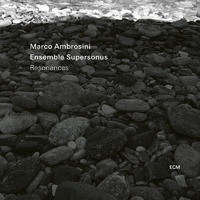 Marco Ambrosini &  Ensemble Supersonus - Resonances