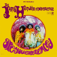 Jimi Hendrix Experience - Are You Experienced / 180 gram vinyl LP
