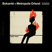 Bokante + Metropole Orkest - What Heat