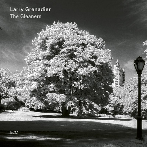 Larry Grenadier - The Gleaners