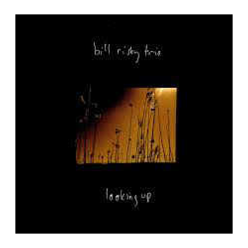 Bill Risby Trio - looking up